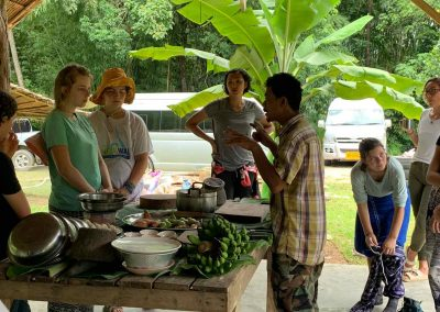 Organic Farm and Foraging