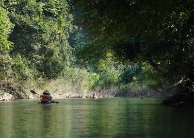 Kayaking on the Sok River