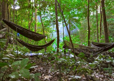 Hammocks in the jungle