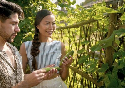 What to harvest for your Farm to Table Cooking Class