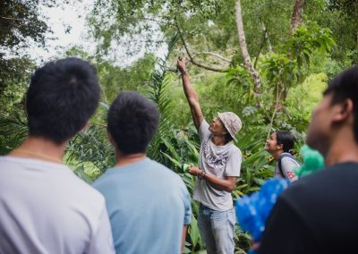 excitement in the jungle of khao sok